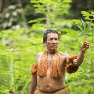 Indigenas Huitotos Ingas Tucanos Ticunas Nukak amazonas (2)
